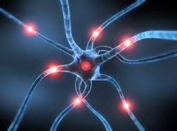 Neurone Alzheimer