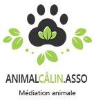 AnimalCâlin – Association de médiation animale du Tarn – Occitanie Logo