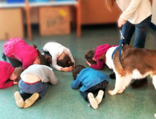 Prévention canine à l'école maternelle