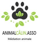 AnimalCâlin – Association de médiation animale du Tarn – Occitanie Logo