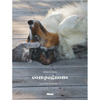 Proposition De Lecture Animalcalin Association De Mediation Animale Du Tarn Midi Pyrenees Occitanie